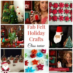 Great ideas for fab felt holiday crafts - and big discount off the class
