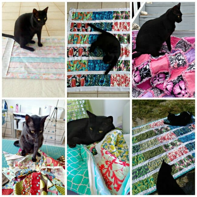 Oliver and quilts