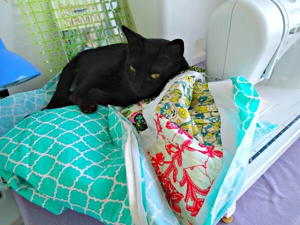 cats and quilting - don't mix