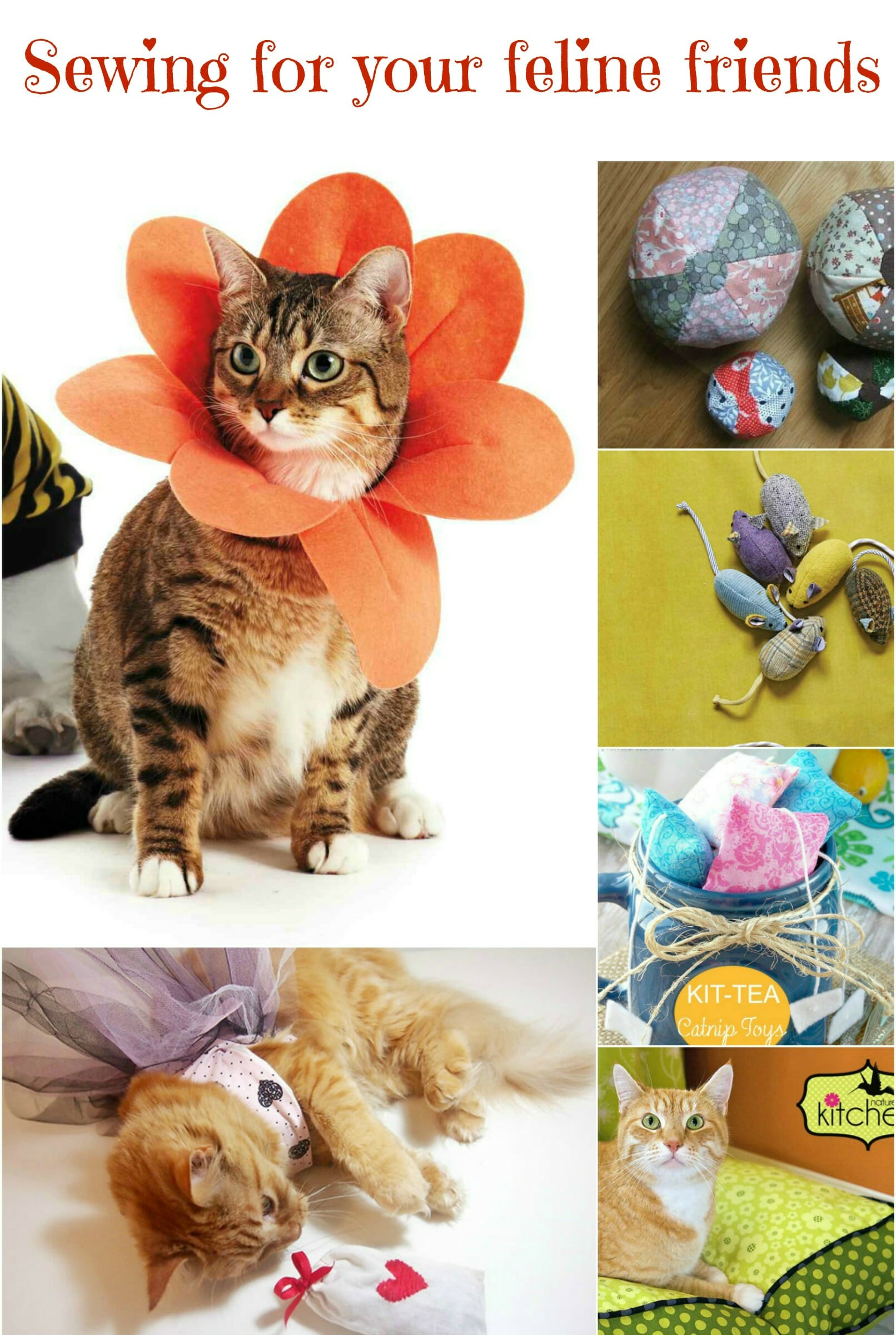 Sewing for your cat