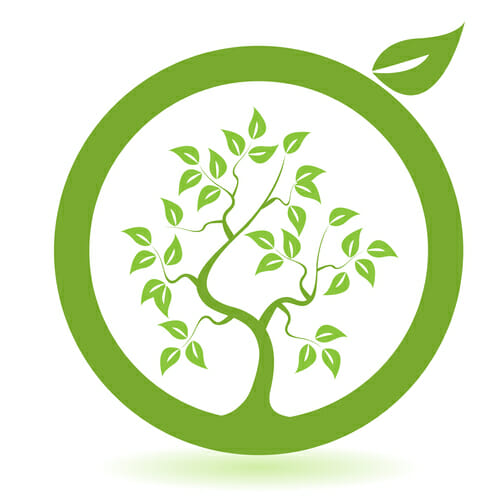 Eco-friendly fabric