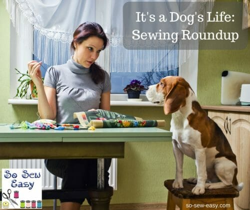 Sewing for your Dog