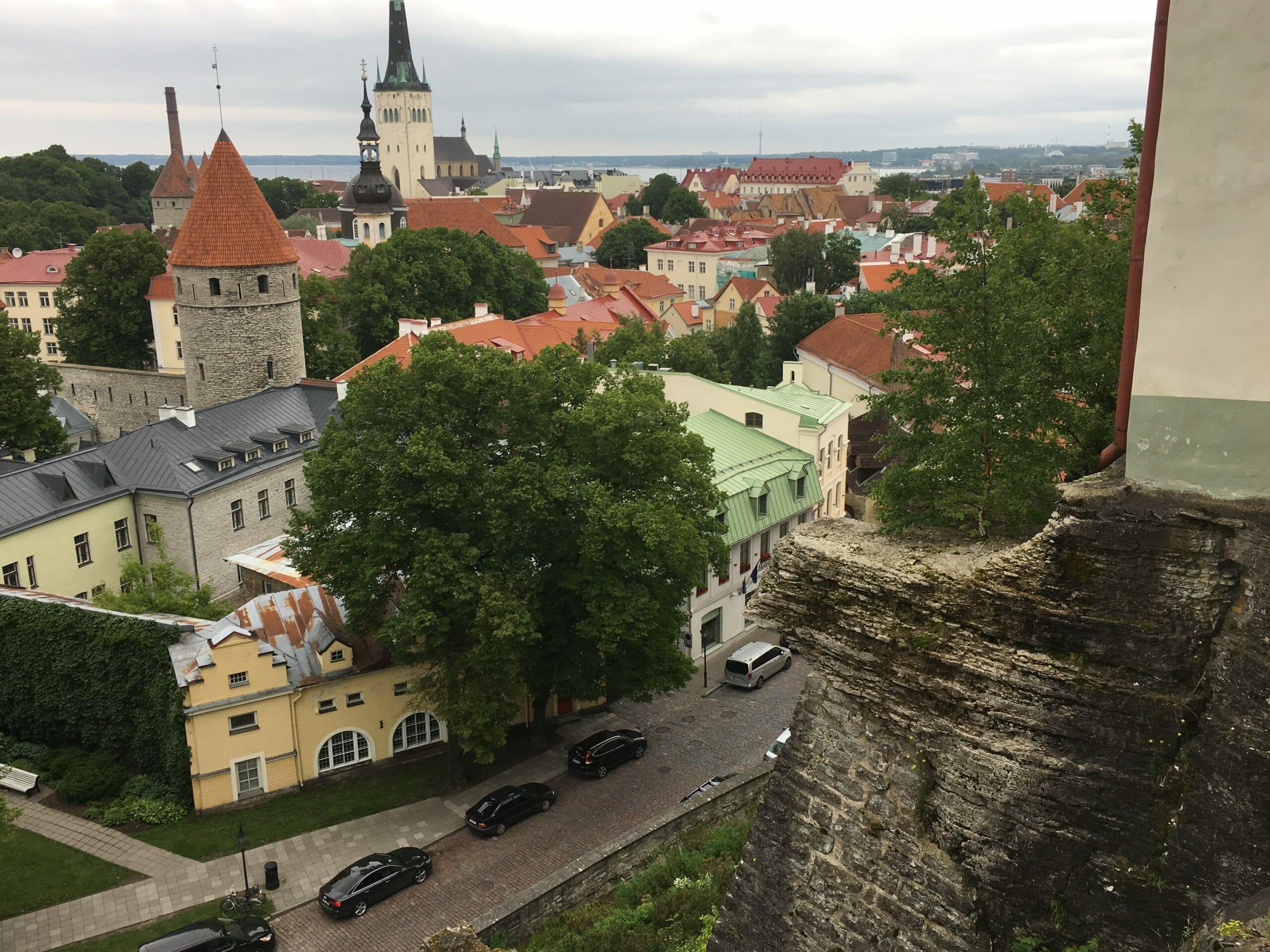 fabric hunting Tallinn