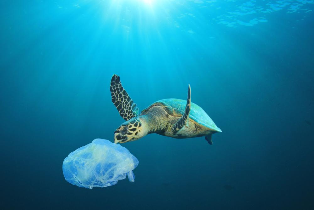 reusable shopping bag patterns